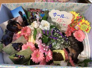 141209 葬儀.jpg