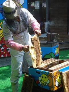 honey festival 037.JPG