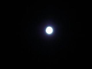 moon 006kai.jpg