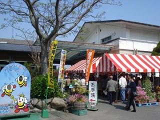 honey festival 004.JPG
